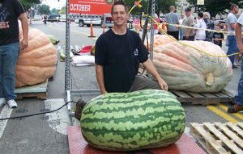 World's Heaviest Watermelon grown by Christopher Kent