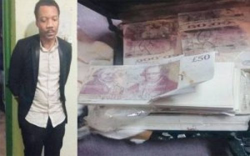 Image about Herbal Seed Fraud: Nigerian Anigbogu Kelly arrested