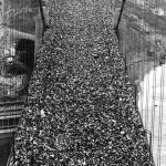 Alleged Golden Gate Bridge Opening Day Photograph Showing Massive Public