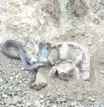 Image about Cobra Snake Found Safeguarding Lord Shiva Idol at Sadashivgad