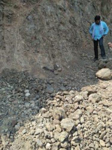 Image about Cobra Snake Found Safeguarding Lord Shiva Idol at Sadashivgad