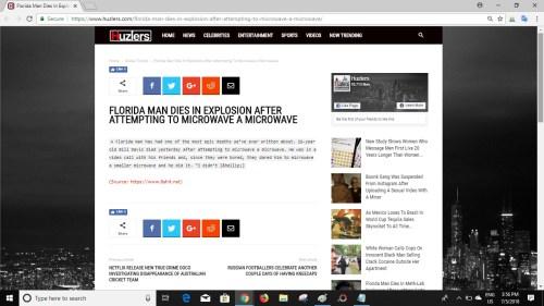 Screenshot of article on Huzlers website