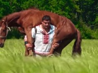 Image about Man Carries Horse On His Back For 3 Miles After Snake Bite