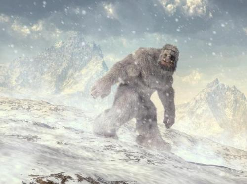 Representational image of a Yeti