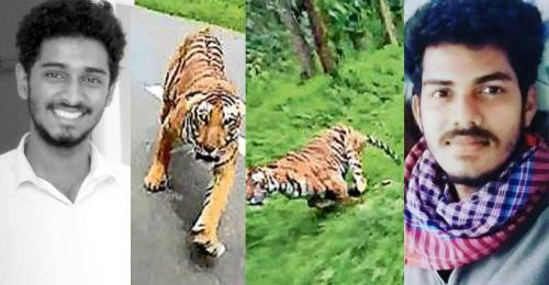 Image about Tiger chasing two men on Bike