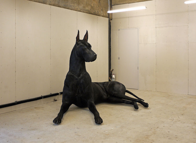 Image of Dog Sculpture made by a Taxidermist for conceptual artist Peter Coffin