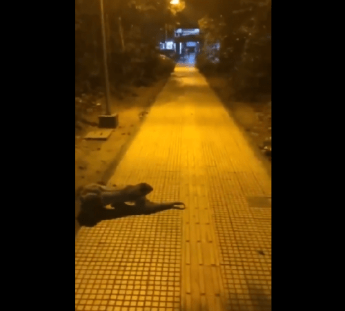 Image about Zombie like Creature Crawling Over Footpath at Night, Video