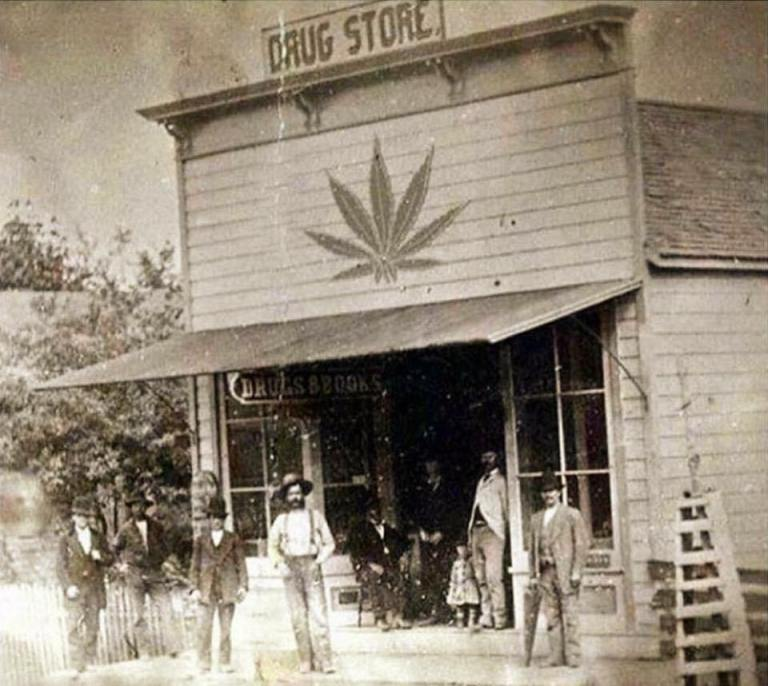 Image about Drug Store in Late 1800's With Marijuana Leaf Symbol