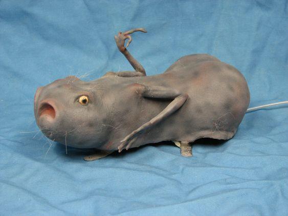 Animal Oddity – Deformed Lizard Rat Photograph: Fact Check