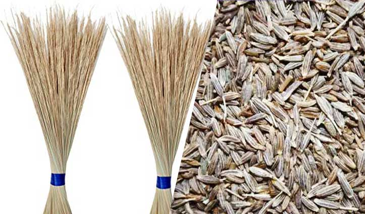 Fake Cumin Seeds Made from Broom Bits & Stone Powder