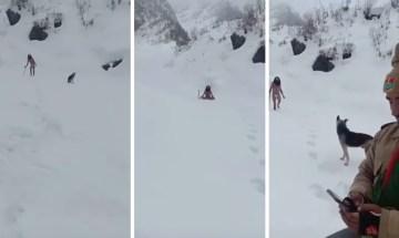 Image about Sadhu Praying in Himalayas Snow in Minus 45 Degrees