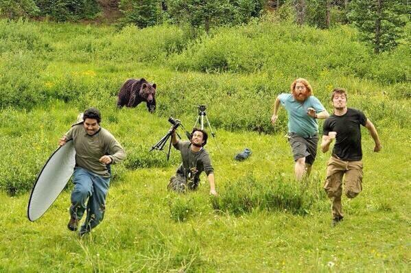 Image about Bear Chases National Geographic Crew During Filming