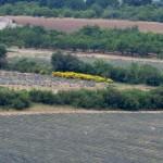 Utsikt fra Sault