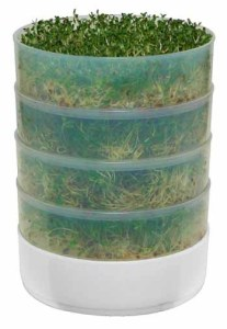 stacked  microgreens grow box