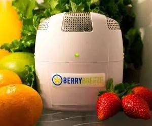 BerryBreeze-refrigerator-air-filter-deodorizer