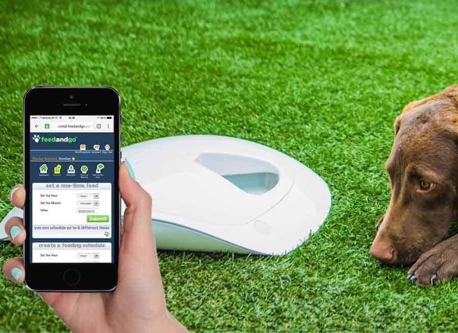 element pet feeder petkit enabled smart wi fi products