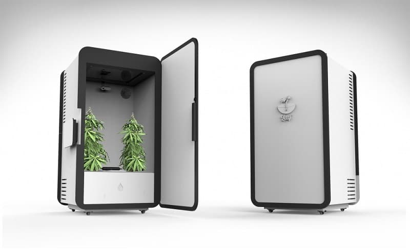 next level weed growing with this smart system