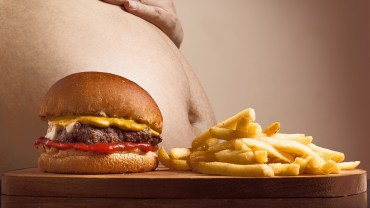 Fat tummy with hamburger and fries.