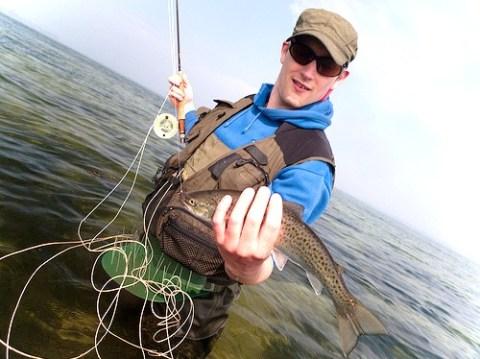 Meerforelle angeln mit der Fliegenrute