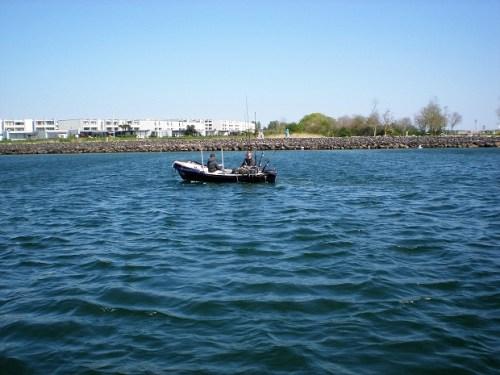 Hornhecht angeln Ostsee