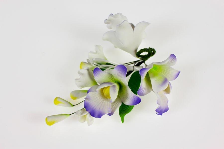 ZuckerOrchideen wei  lila 13 cm