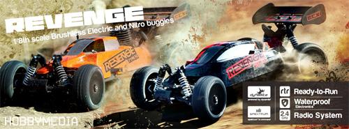 revenge-buggy-horizon-hobby1