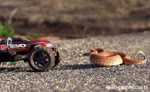 automodello-rc-serpente-a-sonagli