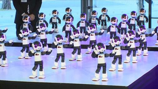 robi_robot