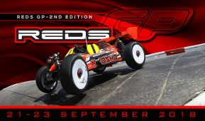 Reds Racing GP 2018 per buggy in scala 1/8