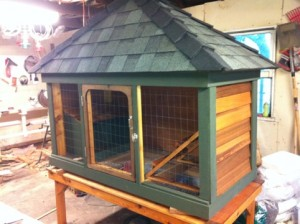 City Chicken Coop