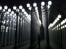 Standing amongst the light