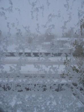01-061026-1-outside-my-window