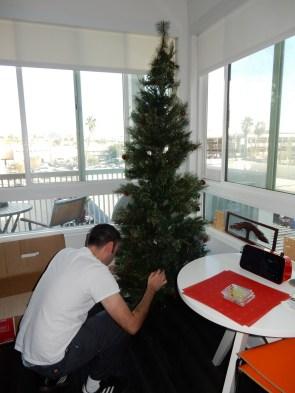 Assembling the tree
