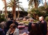 Visiting the flamingos at the Flamingo