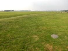 Nice wonderful green fields