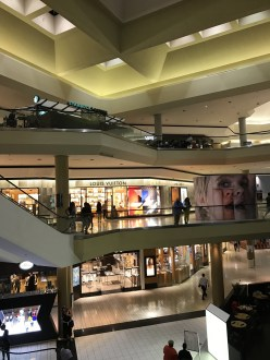 This is the open area that looks a lot like Chopping Mall