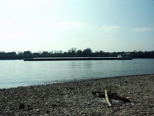 In Flittard am Rhein