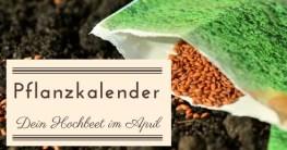 Pflanzkalender: Dein Hochbeet im April | Pflanzplanung | was wann aussäen anpflanzen