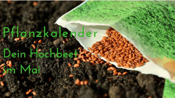 Pflanzkalender Dein Hochbeet Garten Im Mai Hochbeet Info De