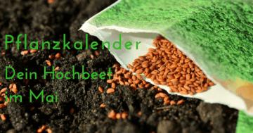 Hochbeet Pflanzkalender Gartenkalender Mai urban Gardening