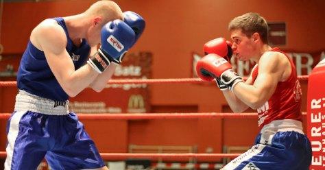Neue Website OOEBV roter und blauer Boxer kämpfen miteinander