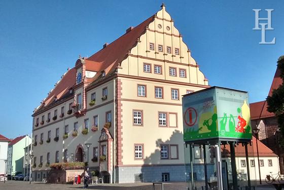 Hochzeit Fotograf  Standesamt Eilenburg Rathaussaal