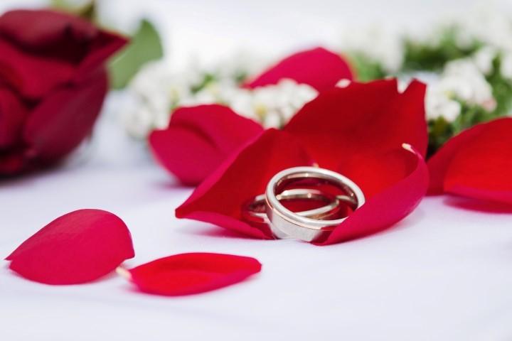 Hochzeitsringe 2015 Individuelle  feine Schmuckstcke fr die Braut  Hochzeitcom