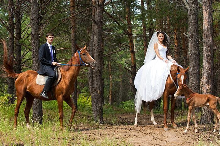 Hochzeitsfoto Tipps