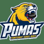 Pumas fontenay