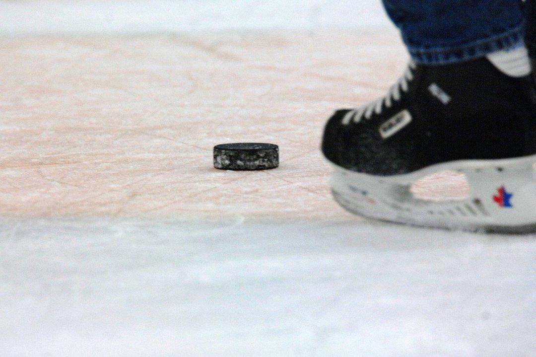 hockey novels