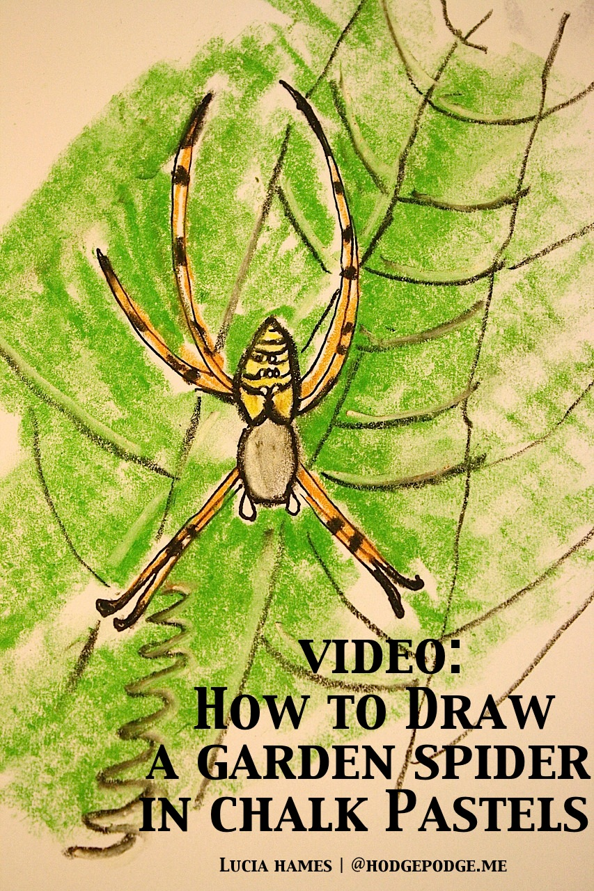 How To Draw A Garden Spider With Chalk Pastels  Hodgepodge