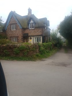 Hodgsons chimney sweeps carrying out a camera inspection and thatch inspection on a thatch a cottage in devon, dawlish.
