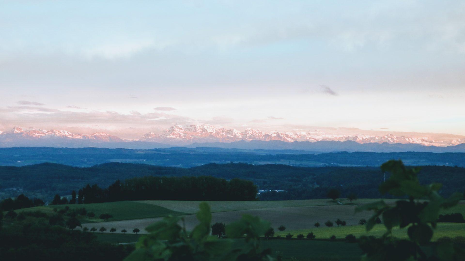 Bodensee Blick