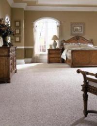 CarpetStain